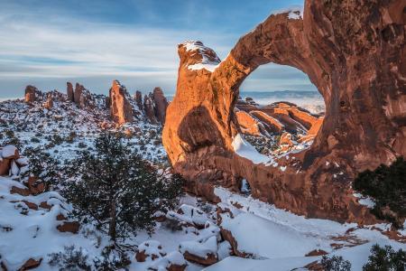 峡谷,雪,冬天,拱,岩石,树,美女