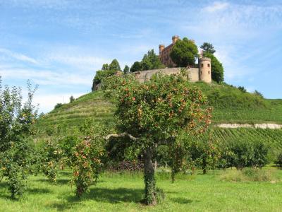 夏天,苹果,城堡