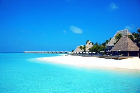 岛,度假村,沙滩,马尔代夫,海洋,棕榈树,家和舒适