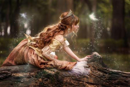 森林,女孩,童话故事,皇冠,红色,日志,卷发,仙女