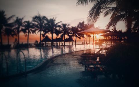日落,照片,水,游泳池,海滩,天空,太阳,海,棕榈树