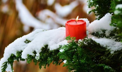 对象,散景,树木,火,蜡烛,雪