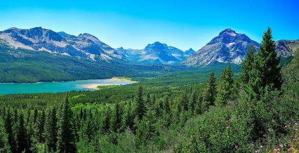 山,湖,森林,景观,冰川,国家公园,圣玛丽湖,云杉