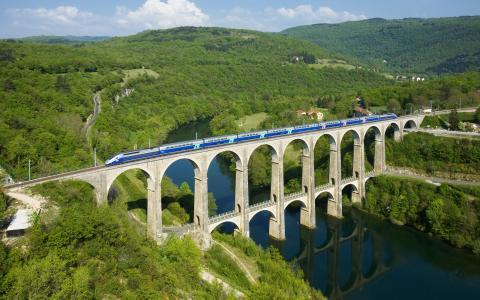 火车,桥,丘陵,树木