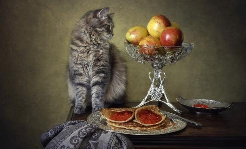嘉年华,猫Masyanya,鱼子酱,煎饼,苹果,伊琳娜Prikhodko