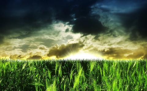 绿色的田野,黑暗的天空,云,太阳光线,Mac