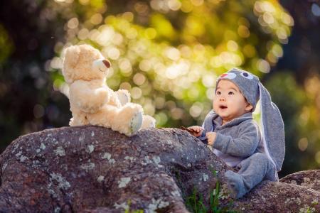 Derek张,婴儿,婴儿,玩具,泰迪熊,服装,野兔,性质,石头,散景