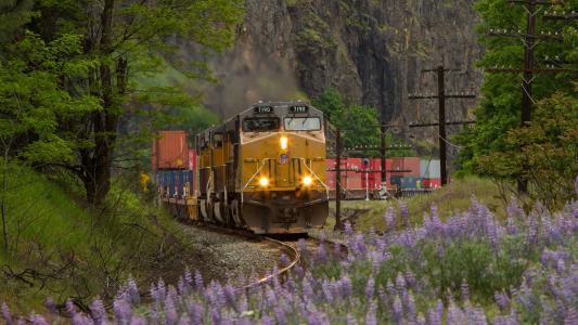 货运列车,机车,运输,火车