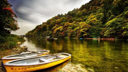 天空,森林,岸,河,船
