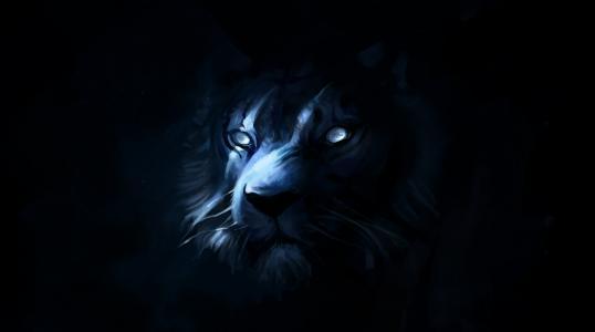狮子,艺术,捕食者,黑暗的背景