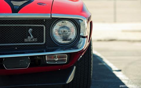 谢尔比,汽车,汽车,眼镜蛇,斯洛比