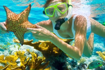 女孩,底部,海,明星,面具,珊瑚,海底世界