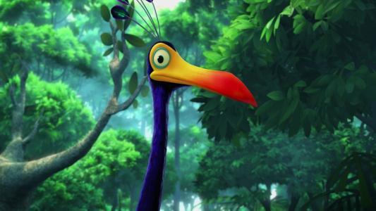 凯文,喙,鸟,大鸟,凯文