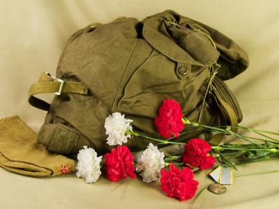 男子,飞行员,花,奖牌,所有,背包