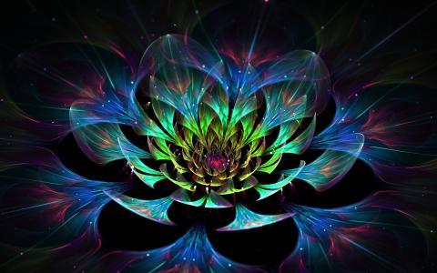 性质,花,3D,花,莲花