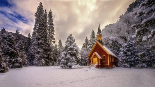 房子,雪,冬天,树木