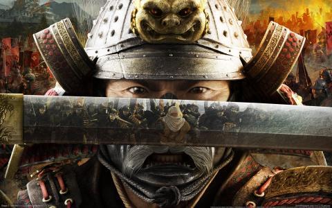 游戏,图片,壁纸,幕府将军2全面战争