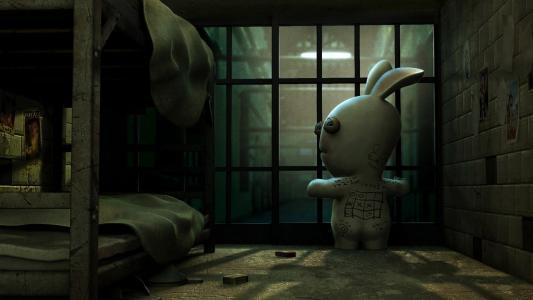 监狱,野兔,帮助,笼子
