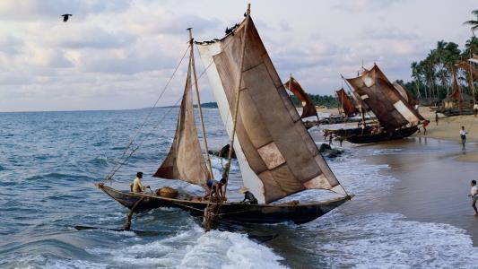 海,船,岸
