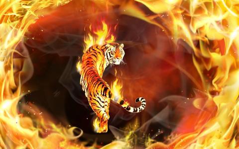 3D,火,火焰,猫,老虎,photoshop