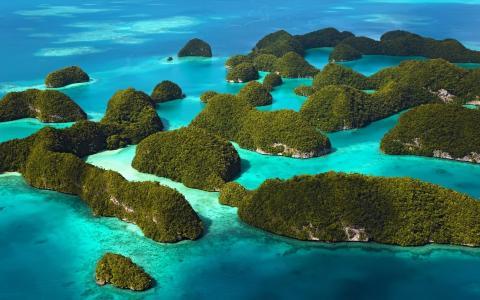 岛屿,巴哈马,热带,海洋,美丽