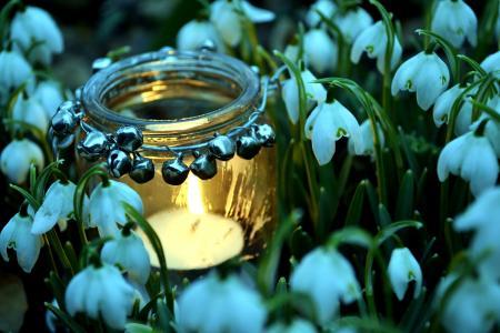 瓶子,雪花莲,蜡烛,春天,火