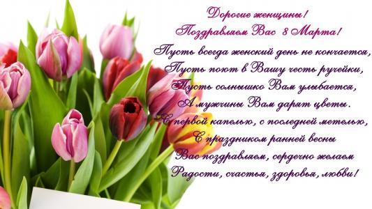 3月8日,郁金香,妇女节,祝贺,郁金香,春天