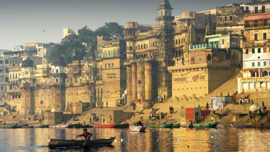 印度,河,船,城市,海鸥