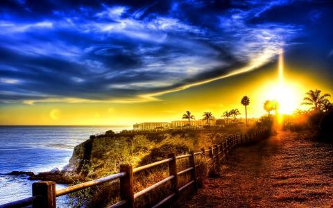 海洋,篱笆,海,海岸,建筑物,棕榈树,道路