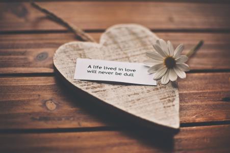 生活,表扬,言语,浪漫,爱情,感受