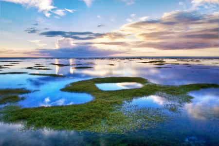 天空,云,泻湖,湖泊,水,草