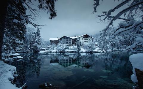自然,湖,冬天