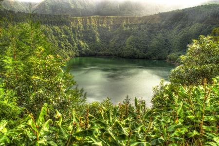 葡萄牙,湖,森林,人类发展报告,拉戈阿圣地亚哥,自然