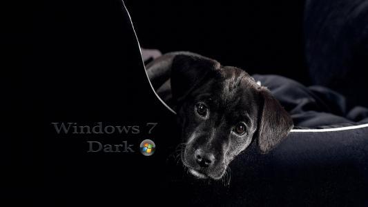 Windows 7,3D