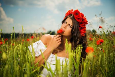 女孩,构成,夏天,原野,罂粟,小麦,美丽