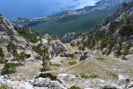 克里米亚,裙子,乌克兰,山,ai petri,森林,岩石,石头,性质,黑色,海,阿卢普卡,船,2013年9月