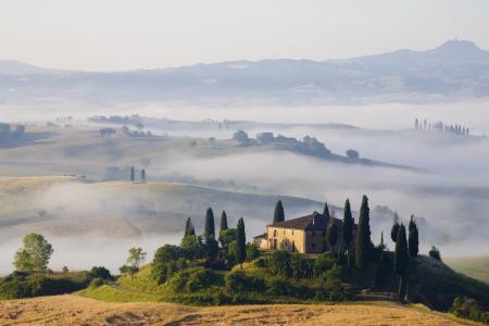 领域,早上,景观,丘陵,自然,雾,房子,托斯卡纳