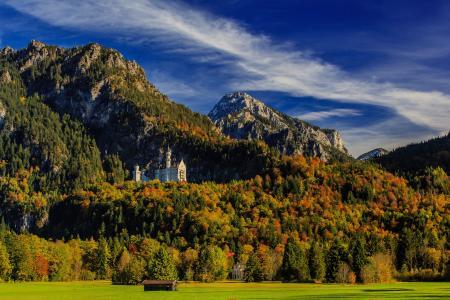 德国,山,城堡,森林,新天鹅堡,天空,巴伐利亚,树,性质
