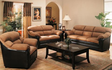 窗帘,植物,扶手椅,桌子,沙发,客厅,窗户