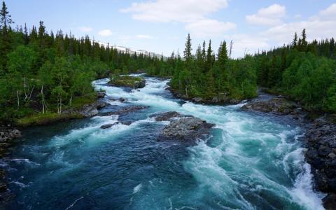 蓝河山,绿色的森林,松树,群岛,岩石,高清