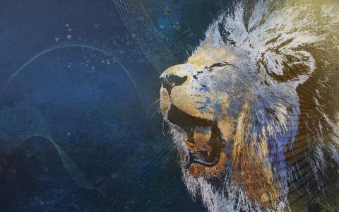 抽象,背景,狮子,条纹