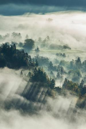 清晨迷雾下的大山风光