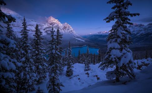 沛托湖,班夫国家公园,冬天,高山,湖泊