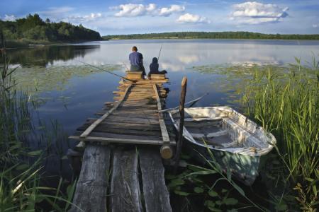 钓鱼,人,夏天,美丽