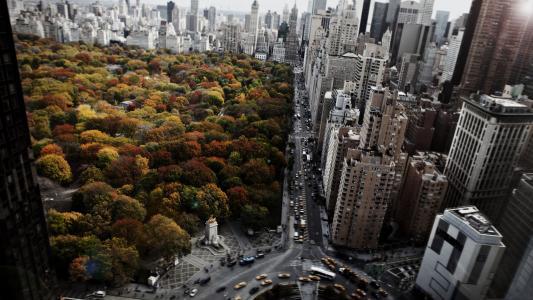 房屋,公园,道路,美国,顶部,纽约,城市