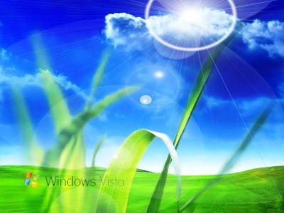 自然,草,标志窗口