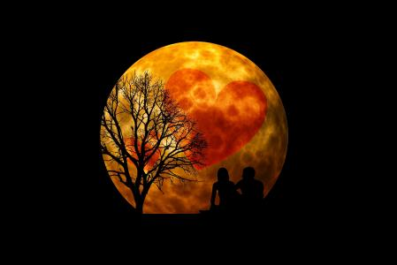 晚上,月亮,心,树,恋人,3d图形