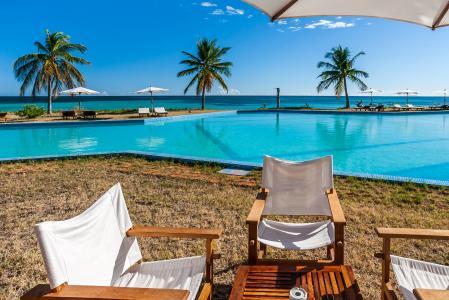 自然,热带,海,沙滩,雨伞,棕榈树,游泳池