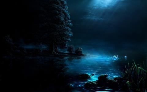 自然,艺术,图片,晚上,光,月亮,湖,天鹅,黑暗的背景,美丽