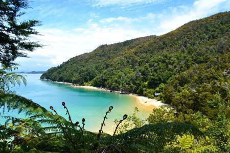 海滩,山,海洋,美丽,夏天